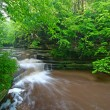 Giants Bathttub Matthiessen State Park — Stock Photo