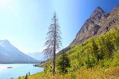 Lake Josephine Glacier National Park — Zdjęcie stockowe