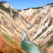 Grand Canyon of the Yellowstone River — Stock Photo #36957485