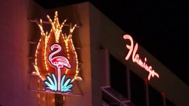 Flamingo Las Vegas — Stock Video