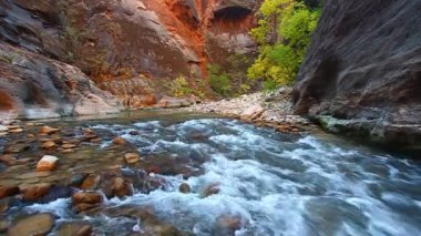Virgin River Zion National Park — Stock Video