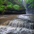 Stock Video: Matthiessen State Park Cascade Illinois