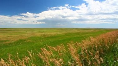 South Dakota Prairie Scenery — Stock Video