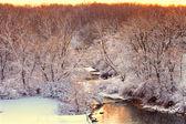 виллоу крик scene зимы иллинойс — Стоковое фото