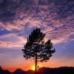Grand Teton Sunset — Stock Photo #5389202