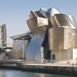 Guggeheim Museum of Bilbao — Stock Photo