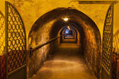 Corridor of an old wine cellar — Stock Photo