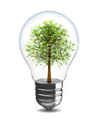 Treen in light bulb — Stock Photo