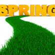 Road to spring — Stock Photo