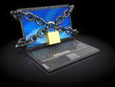 Korumalı laptop — Stok fotoğraf