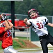 Catching the Touchdown Pass - Stock fotografie