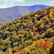 Scenic Mountains in Autumn — Stock Photo