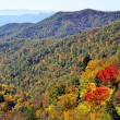 Red Trees in Autumn Mountains — Stock Photo