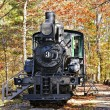 Steam Locomotive on Display — Stock Photo