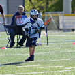 Young Boys Lacrosse — ストック写真 #24357305