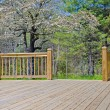 Stock Photo: Wood Deck on House