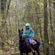 Young Girl on Horse in the Woods — Stock Photo
