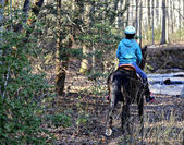 Girl Riding Horse in the Woods — Stock Photo