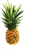 A big single pineapple — Stock Photo