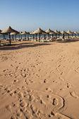 Sand beach — Stock Photo