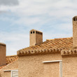 Stock Photo: Spanish roofs
