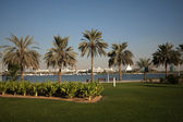 Dubai Creek Park — Stock Photo