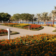 Dubai Creek Park - Stock Photo