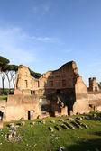 Monte palatino, roma, itália — Fotografia Stock