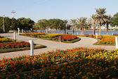 Dubai Creek park — Stockfoto