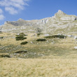 Stock Photo: Durmitor, Montenegro