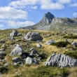 Durmitor, Montenegro — Stock Photo