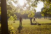 Westpark v mnichově, německo — Stock fotografie