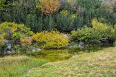Lake on Durmitor mounain, Montenegro — Stock Photo