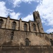 La Seu cathedral in Barcelona — Stock Photo