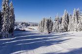 冬天山 — 图库照片