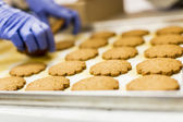 Cookies factory — Stock fotografie