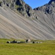 Iceland farm — Stock Photo