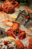 Mořské plody — Stock fotografie