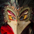 Traditional venetian carnival mask — Stock Photo #26044809