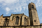 La Seu cathedral in Barcelona, Spain — Stock Photo