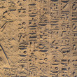 Hieroglyphics — Stock Photo #28919711