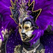 Venetian carnival mask — Stock Photo #29263529