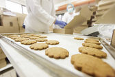 Cookies factory — Stock Photo