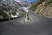 Hadec v italských alpách vede do průsmyku stelvio — Stock fotografie