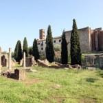 Roman Forum — Stock Photo