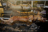 Roasted pigs — Stock Photo