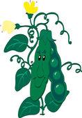 Green peas — Stock Vector