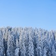 Mountain at winter — Stock Photo #34587435