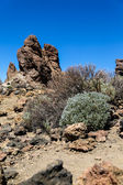 Teide National Park in Tenerife, Spain — Stock Photo