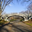 Bridge in Central Park, New York — Stock Photo